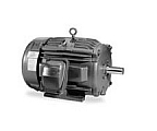 Baldor EM7062T-C Explosion Proof, Three Phase, Foot Mounted