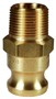 "Dixon 100-F-BR 1"" Brass Male Adapter x Male NPT"