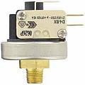 Dwyer A9-1 Pressure switch, 29-87 psig (02-06 bar)